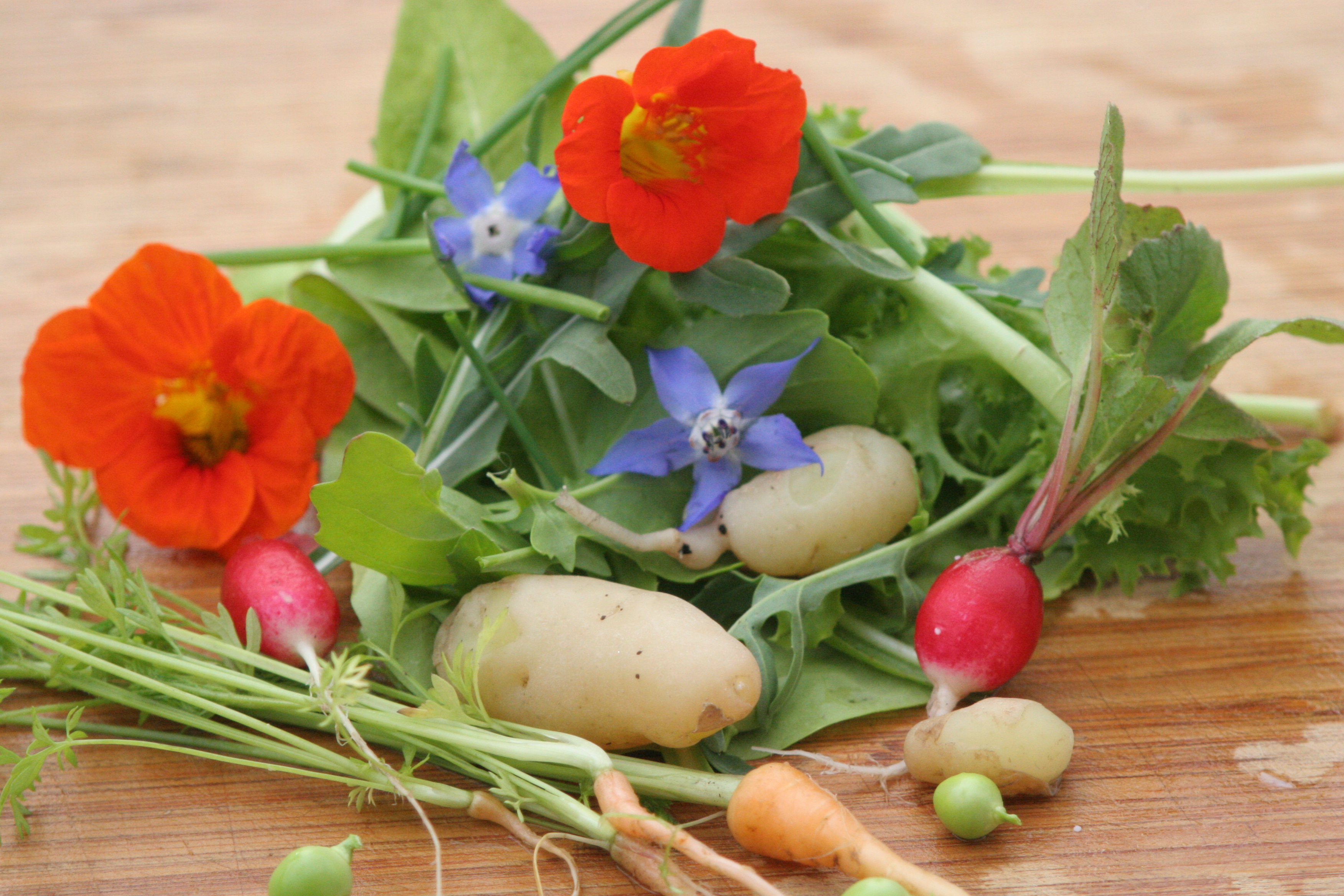 La Cuoca Ciccia   Savory and sweet recipes from my ...