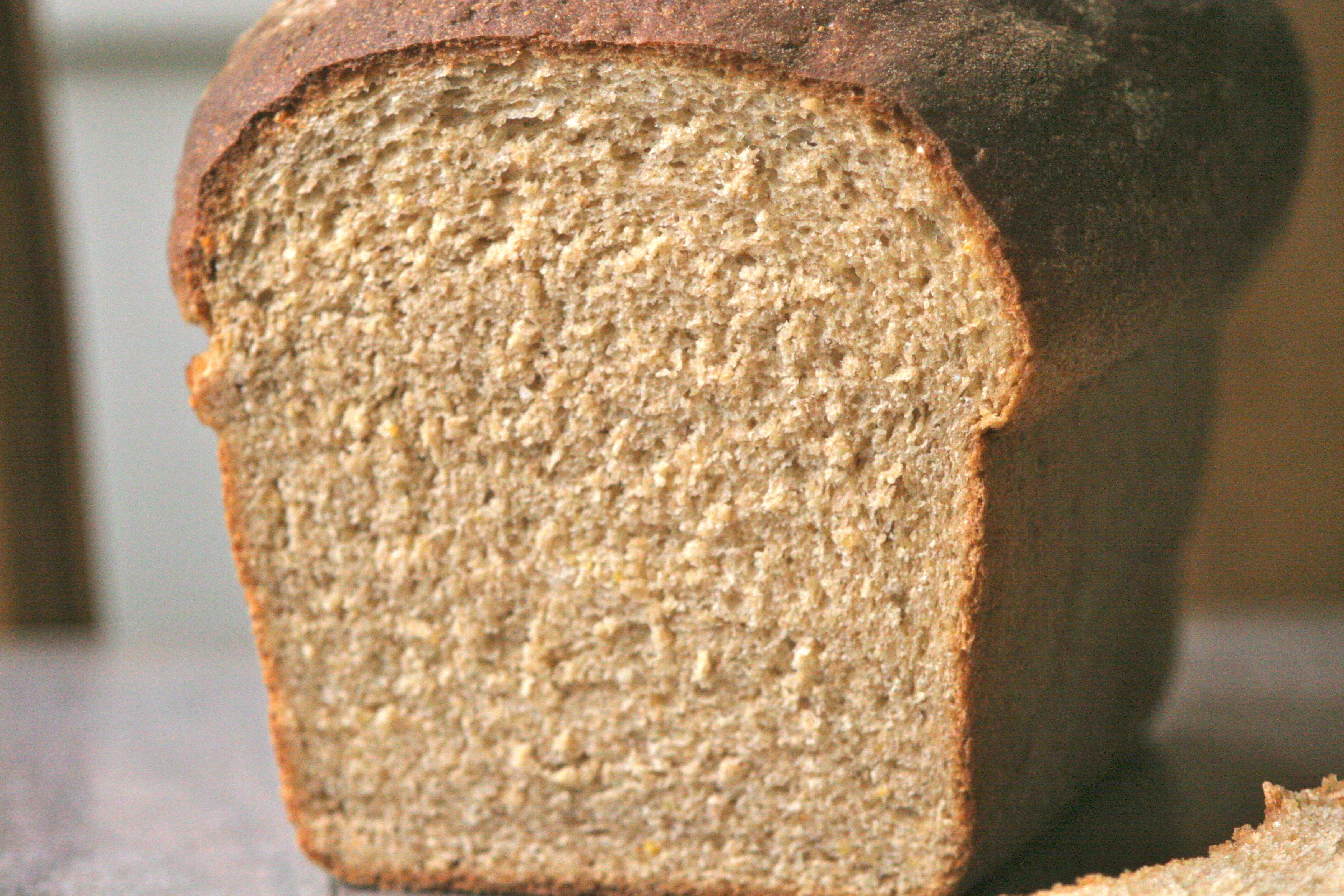 Every Day Multigrain Whole Wheat Bread | La Cuoca Ciccia